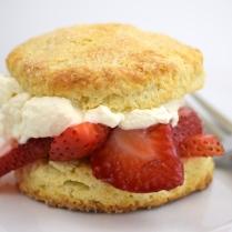 Organic Strawberry Shortcake