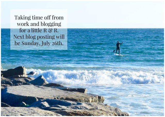 Next Blog Posting